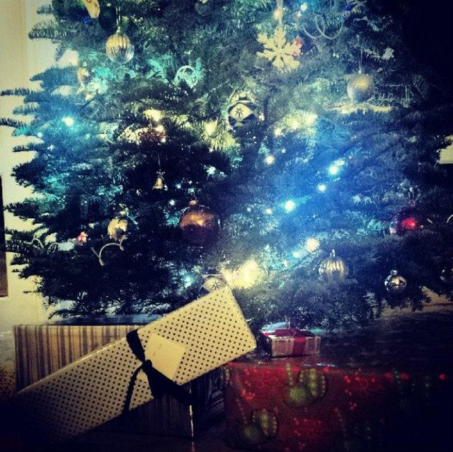celebrities-christmas-trees_Emmy-Rossum Celebrities Christmas Trees Celebrities Christmas Trees celebrities christmas trees Emmy Rossum